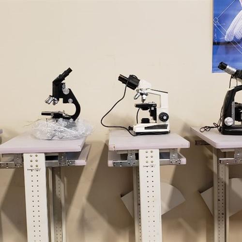 Lot of 5 Microscopes